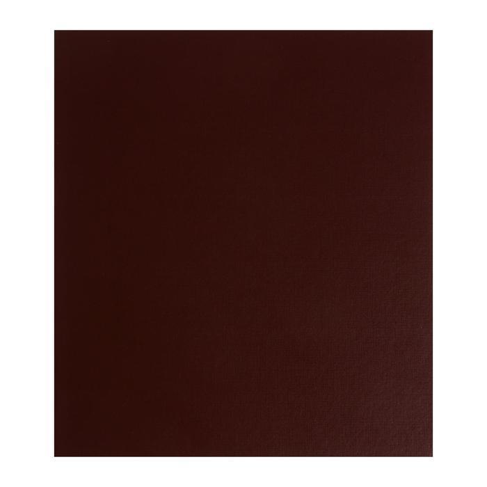 Альбом для монет 'Стандарт', 230х270 мм, без листов, коричневый - фото 1