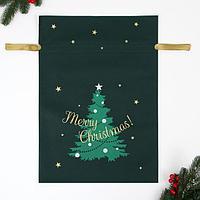 Мешок подарочный 'Новогоднее чудо', 40x56 см (комплект из 25 шт.)