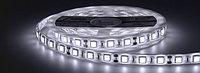 Светодиодная лента 5050 белого цвета 60 светодиодов на метр IP65, фото 1