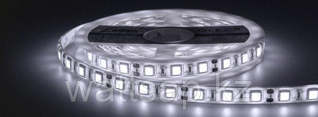 Светодиодная лента 5050 белого цвета 60 светодиодов на метр IP33