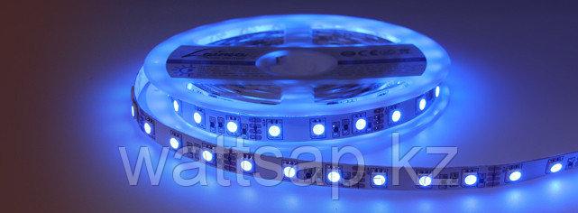 Светодиодная лента 5050 синего цвета 60 светодиодов на метр IP65