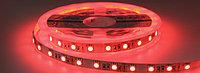 Светодиодная лента 5050 красного цвета 60 светодиодов на метр IP65, фото 1