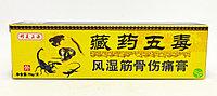 Пять ядов тибетской медицины Спрей против болей Fengshigutongling мазь 15 г