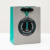 Пакет подарочный 'Лучше всех', 18 х 22,3 х 10 см (комплект из 6 шт.)