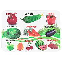 Накладка на стол пластиковая, А4, Обучающая, 330 х 230 мм, 400 мкм, 'Фрукты, овощи', НПД-1
