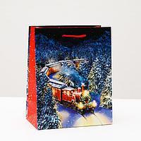 Пакет подарочный 'Новогодний поезд', 18 х 22,3 х 10 см (комплект из 12 шт.)