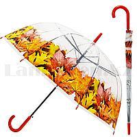 Зонт трость полуавтомат прозрачный 80 см с каплями дождя и кленовыми листьями оранжевыми