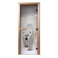 Стеклянная дверь для бани с фотопечатью «Белый Медведь»