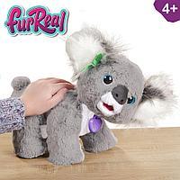 Hasbro E9618 FurReal Friends Коала Кристи