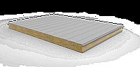 Стеновая сэндвич-панель, толщина - 100 мм.