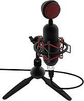 Микрофон RITMIX RDM-230 USB Eloquence, Black