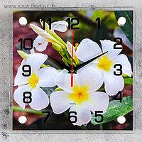 """Часы настенные, серия: Цветы, """"Белые цветки"""", 25х25 см, плавный ход, микс"""