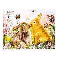 Роспись по холсту «Кролики в поле» по номерам с красками по 3 мл+ кисти+инстр+крепеж, 30 × 40 см