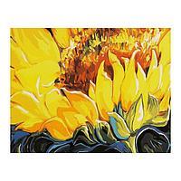Роспись по холсту «Подсолнух» по номерам с красками по 3 мл+ кисти+инстр+крепеж, 30 × 40 см