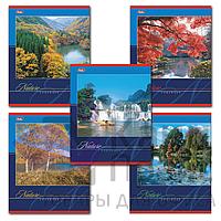 Общая тетрадь 36 л. 2видов (обложка мелованный картон) вид: «Замки», «Шотландка», «Животные», «Птицы