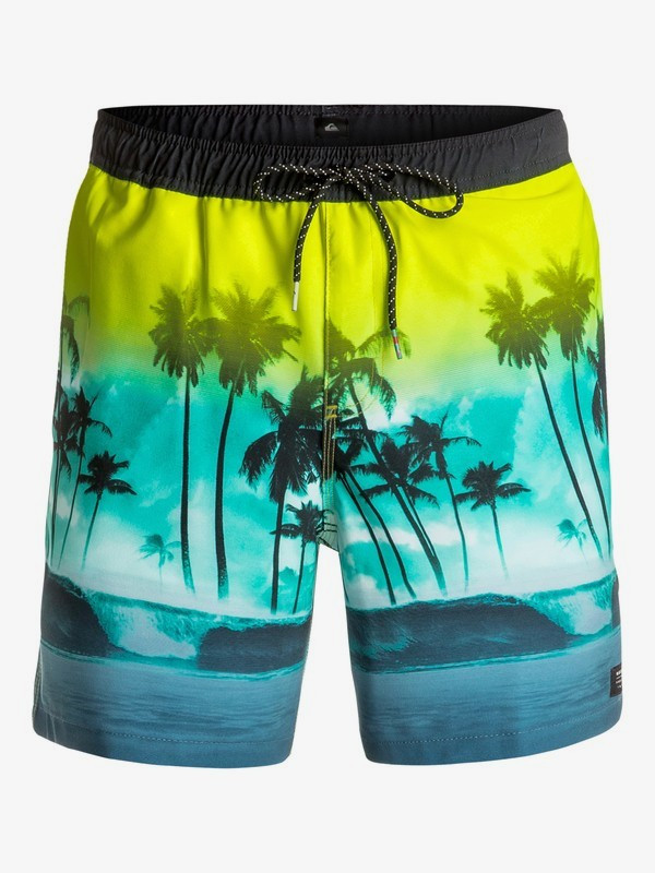 Шорты пляжные мужские Quiksilver Waves 17