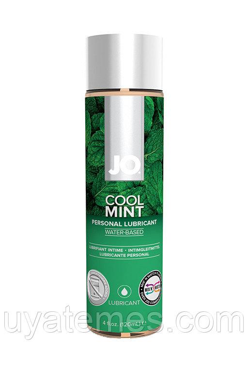 """Вкусовой лубрикант """"Мята"""" / JO Flavored Cool Mint H2O 4 oz - 120 мл."""