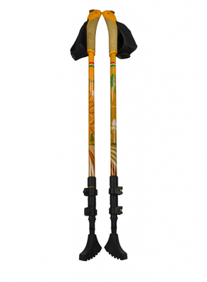 Трость для скандинавской ходьбы 3-секционная ERGOFORCE E 0679