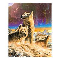 Роспись по холсту «Волки» по номерам с красками по 3 мл+ кисти+инстр+крепеж , 30×40 см