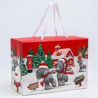 Пакет-коробка подарочная 'Best Wishes', Me To You