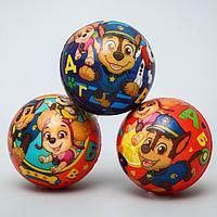 Мягкий мяч PAW PATROL 'Алфавит' 6,3см, микс (комплект из 12 шт.)