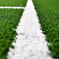 Белая разметочная трава