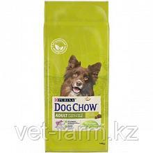 Дог Чау сухой корм для собак