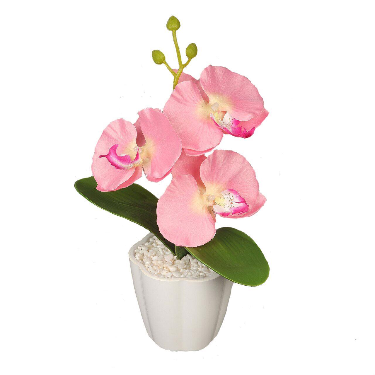 Декоративная композиция-вазон Орхидеи День Матери!
