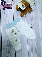 Ползунки Claris Футер теплые (Голубые кенгуру) р.56