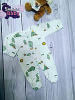 """Слип кулирка Claris """"Стильный зоопарк"""" (Динозавры) р.56"""