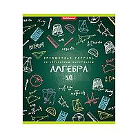 Тетрадь общая ученическая ErichKrause® К доске!, Алгебра, 48 листов, клетка