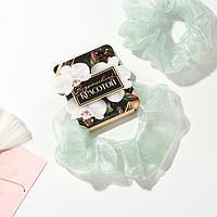 Резинка для волос 'Вдохновляй красотой', диам. 10 см