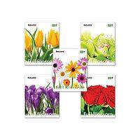 Тетрадь 48 листов в клетку, BRAUBERG ЭКО Full Blossom, обложка мелованный картон, микс (комплект из 20 шт.)