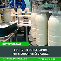 Требуются рабочие на молочный завод/ Швейцария