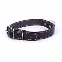 Collar Ошейник одинарный (ширина 10мм, длина 22-30см)черный