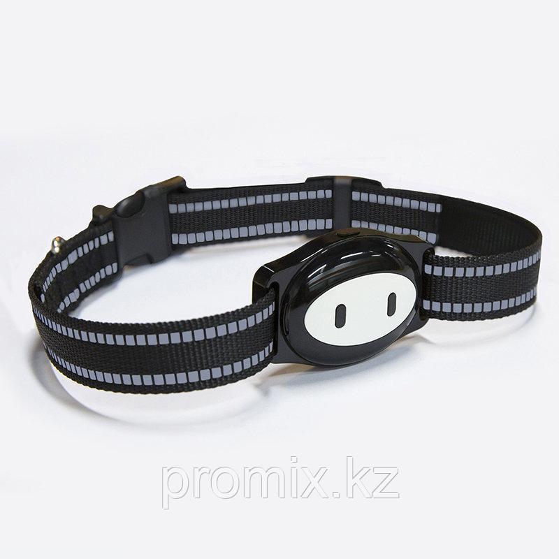 GPS трекер для собак  Wonlex Pet Tracker PT02