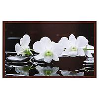 "Картина ""Белые цветы"" 67х107 см"