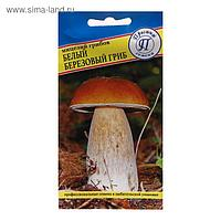 Мицелий грибов Белый гриб березовый , 60 мл