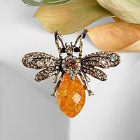 Брошь 'Янтарная муха', цвет золотой в золоте