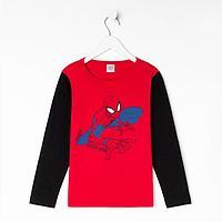 Джемпер детский MARVEL 'Человек паук', рост 110-116 (32), красный/чёрный