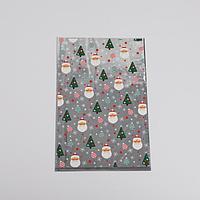 Пакет пластиковый 'Новогодняя пора', 20 x 30 см (комплект из 20 шт.)