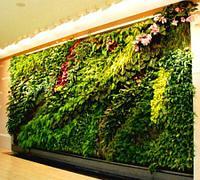 Вертикальное озеленение искусственное, натуральное