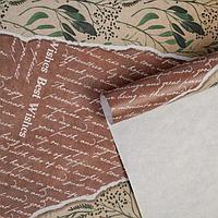 Бумага упаковочная крафтовая «Эко листы», 50 × 70 см