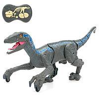 Динозавр радиоуправляемый «Велоцираптор», свет и звук, работает от аккумулятора, цвет серый