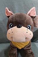 Собака Бульдог, мягкая игрушка 35 см