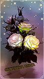 Ночник. Вазочка с розами. Creativ  А - 5, фото 7