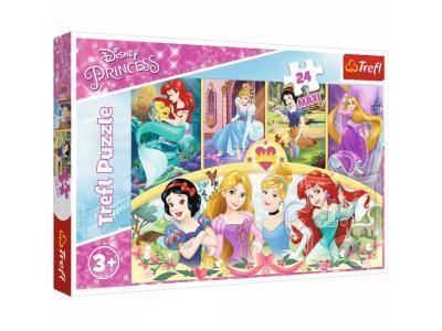 Развивающая игрушка Trefl 14294 Princess Магия воспоминаний 24