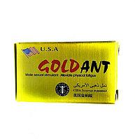 Золотой муравей (Gold Ant)