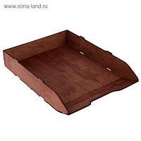 Лоток для бумаг горизонтальный, 320 х 225 х 55 см, деревянный (береза), цвет орех