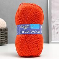 Пряжа OlgaWool (ОльгаЧШ) 95 шерсть, 5 акрил 392м/100гр (670 морков.) (комплект из 2 шт.)